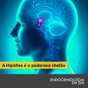 hipofese